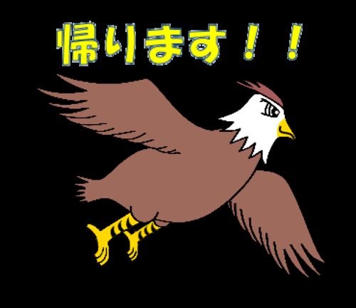 02.タカ帰ります!!.png
