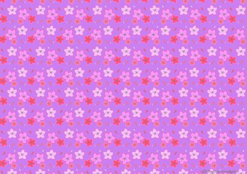 桜(紫)小.png